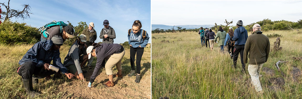 Ecology students tracking animals in Mara Naboisho